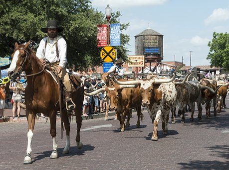 Read more about the article The Chisholm Trail, Bandanas, and Abilene, Kansas – How the Windmill Inn Is Keeping Our Past Alive
