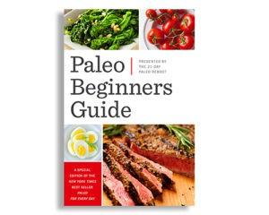 paleo diet beginners guide